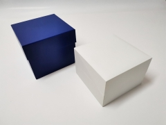 OEM White plastic Watch box with paper for Watch packing box